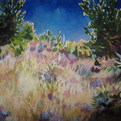 New Mexico Hillside [Private Collection]