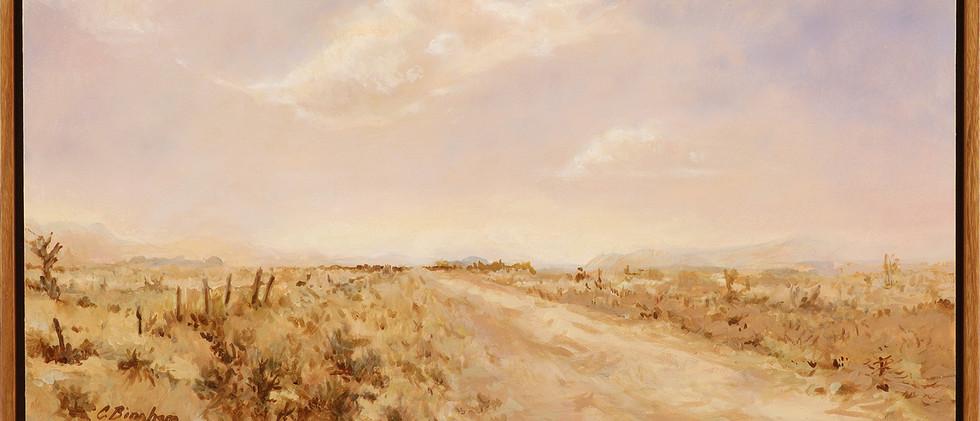 Bingham_Carol, Road to Mimbres, framed.jpg