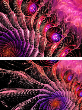 Peacock Diptych