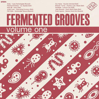 Stereo Ferment merges sounds from around the world in their latest groove compilation