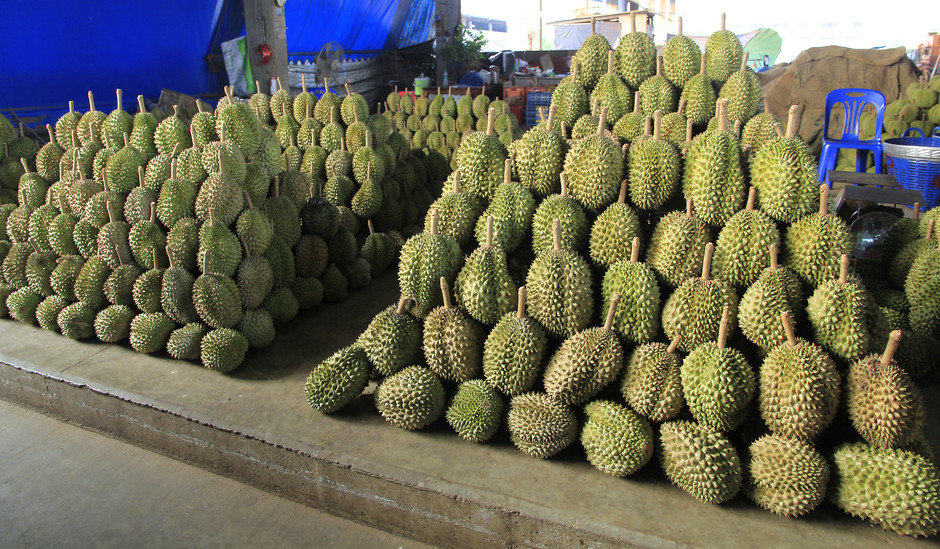 China demand pushes up durian farming in Malaysia: Analysis