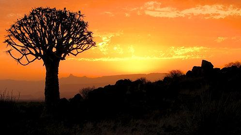 Namib Sunset (16:9) #LS011