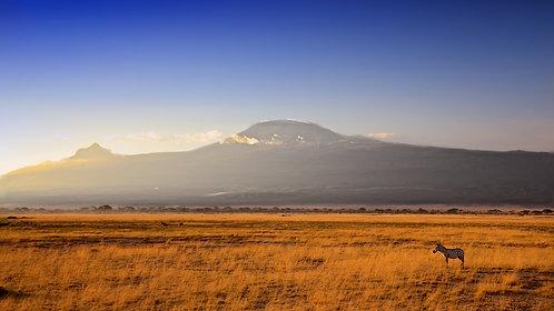 Kilimanjaro (16:9) #DT014