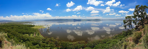 Lake Nakuru Panorama (3:1) #LS019