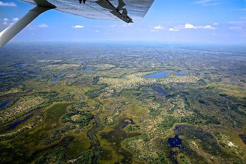 Okavango Delta #LS007