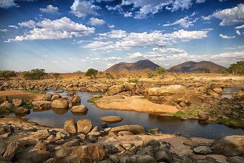 Ruaha Landscape #DT013