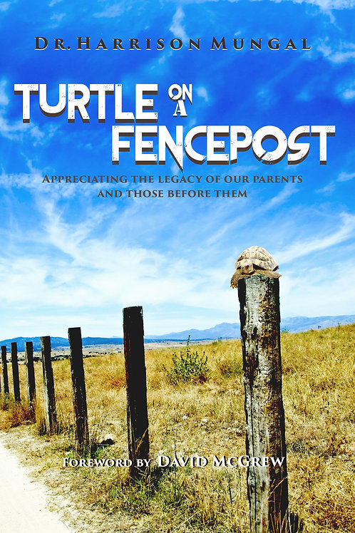 Turtle on a Fence Post