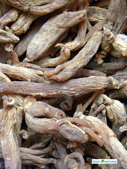 Ginseng red whole