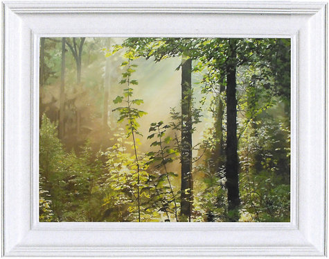 Forest Sunbeam - 30 x 22""