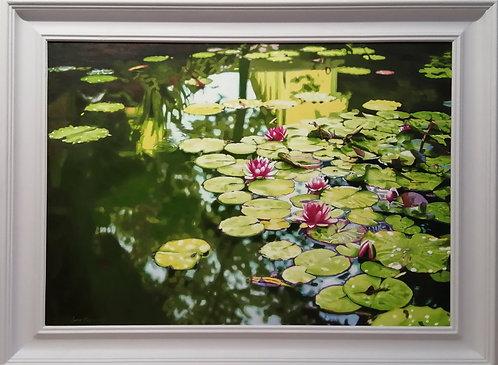 "Waterlilies - 30 x 22"""