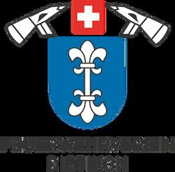 Feuerwehrverein Dietikon