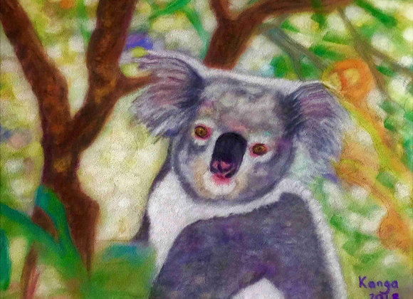 Kooelwong (Aboriginal name for Koala)