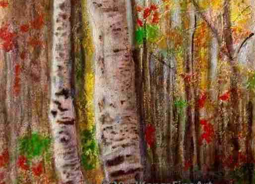 Birch trees and autumn leaves