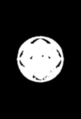 WhiteEyeOnlyLogo-03.png