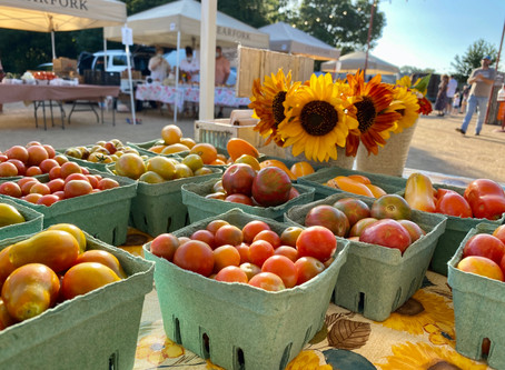 The Clearfork Farmers Market October 17th Vendor List