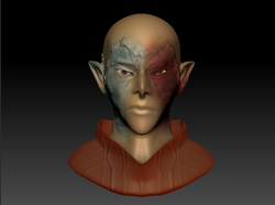 Character Bust 1