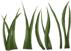 Animated Grass part 2