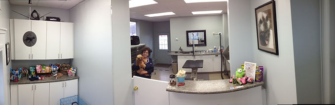 dog grooming, dog grooming Kingston NH