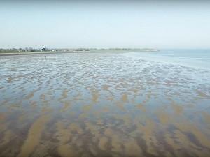 Film zeespiegelstijging, bodemdaling en sedimentatie in de Nederlandse Waddenzee