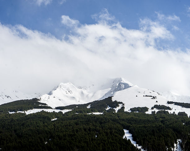 mountains alaska kenai peninsula