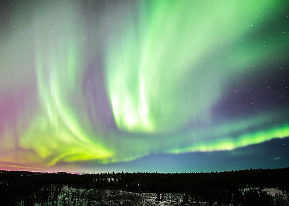 aurora borealis northern lights march winter whitehorse yukon canada