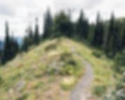 ec manning provincial park alpine meadows british columbia canada