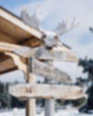 ranch wilderness whitehorse yukon canada winter dog sledding