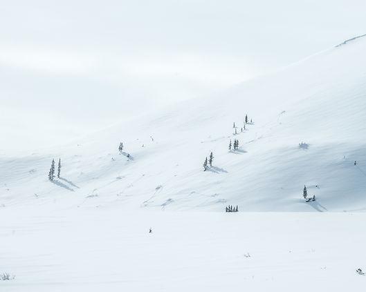 dempster highway winter arctic canada yukon nwt border ice