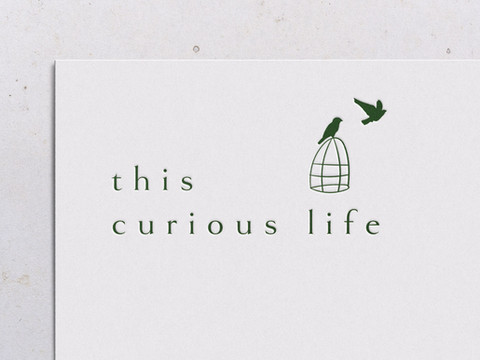 Surrey Brand Identity Designer | This Curious Life Coaching