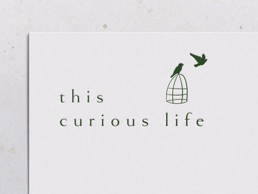 Dorset Brand Identity Designer | This Curious Life Coaching Brand Identity Designer