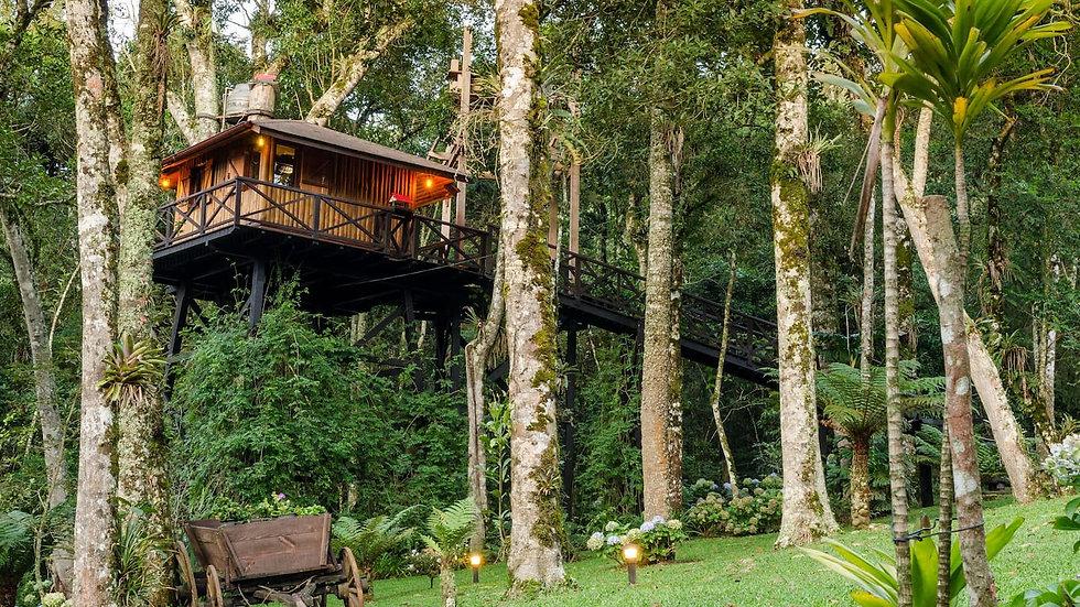 Casa na Árvore em Monte Verde