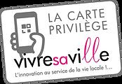 logo-carte-vivresaville.fr.png
