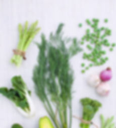 the diet therapists consultancy, nutrition brand advisory, health, nutritional therapist london