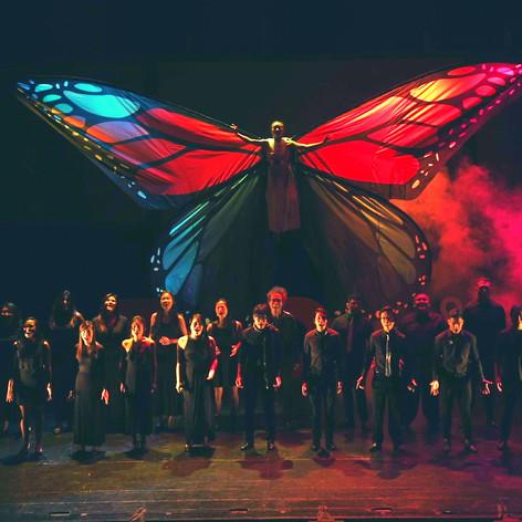 Aerial Butterfly Choir