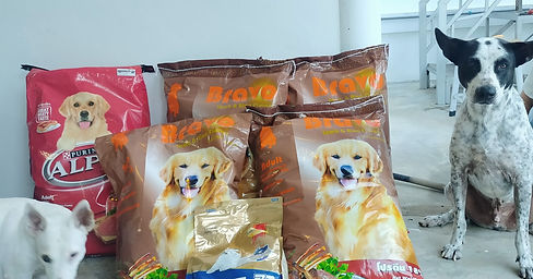 dogs food donation for baan reiki