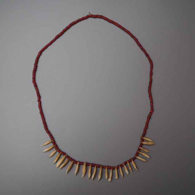 Solomon Islands dog tooth necklace