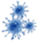 FAVPNG_respiratory-syncytial-virus-infec