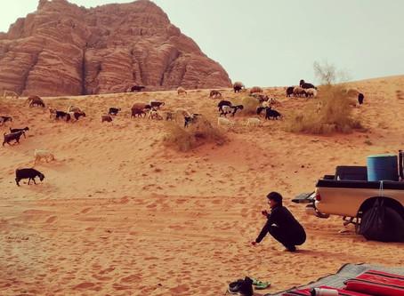 Bedouin Tea Squat