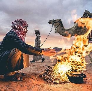 BedouinTeaWR.png