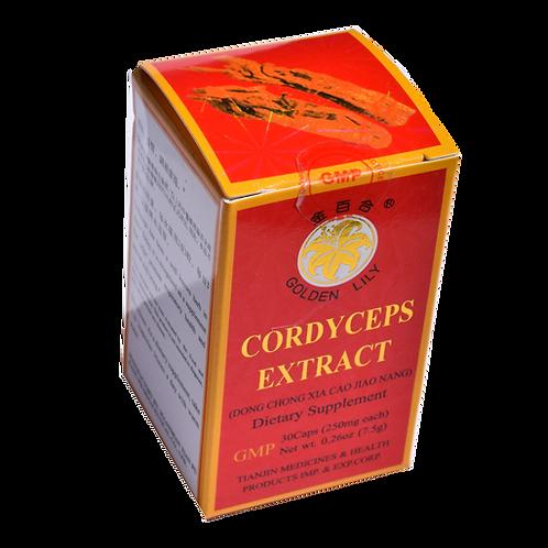 Cordyceps Extract Dong Chong Xia Cao Jiao Nang