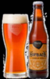 productphoto-hopback2019-bottle-glass-WE