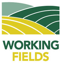 Working Fields
