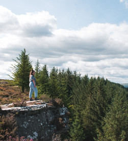 Thrunton Woods | Northumberland National Park
