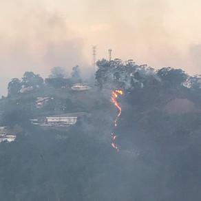 Bombeiros combatem incêndio em área de vegetação próxima a casas em Petrópolis, no RJ .