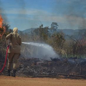 Focos de incêndio crescem 25% no Tocantins; bombeiros intensificam combate em Palmas