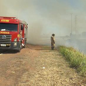 Incêndios aumentam 716% em Campo Grande após 16 dias sem chuva