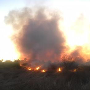 Incêndio de grandes proporções atinge terreno a cerca de 1,5 km da Arena Castelão, em Fortaleza