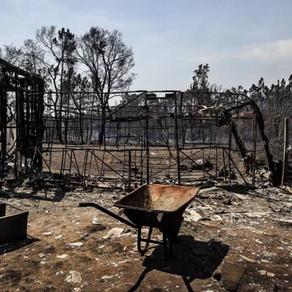 Prejuízos causados pelos incêndios custam seis vezes mais que a prevenção