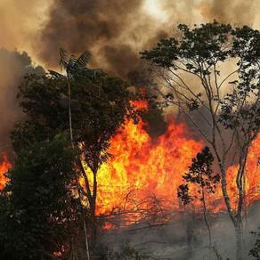 E a Amazônia? Incêndios florestais ganham as redes sob silêncio do governo