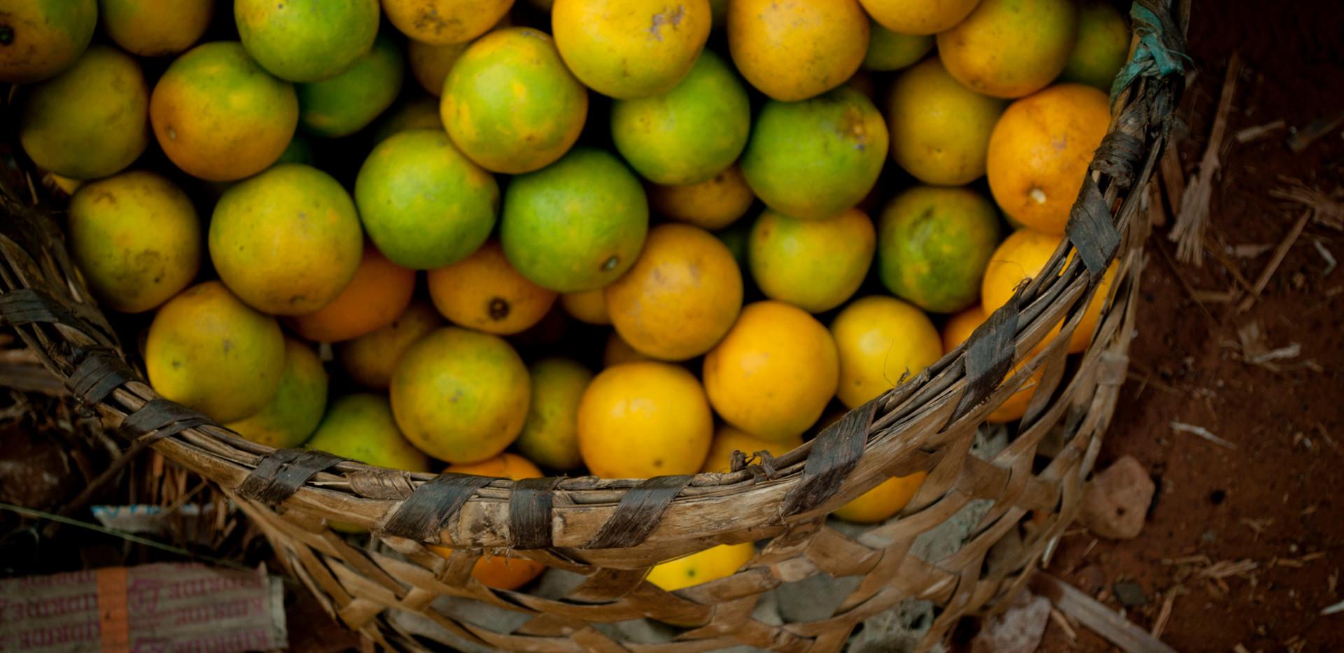 oranges are green
